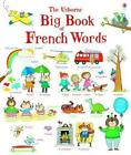 Big Book of French Words von Mairi Mackinnon und Hannah Wood (2014, Gebundene Ausgabe)