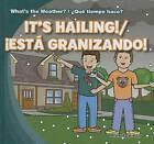It's Hailing!/Est Granizando! by Alex Appleby (Hardback, 2013)