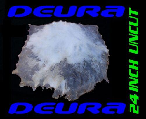 "DEURA 24/"" UNCUT GOATSKIN REAL HEAD FOR ASHIKO DJEMBE NATIVE BODHRAN DRUM GKS2400"