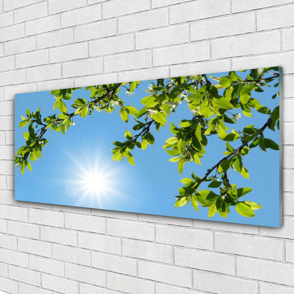 Acrylglasbilder Wandbilder aus Plexiglas® 125x50 Sonne Natur