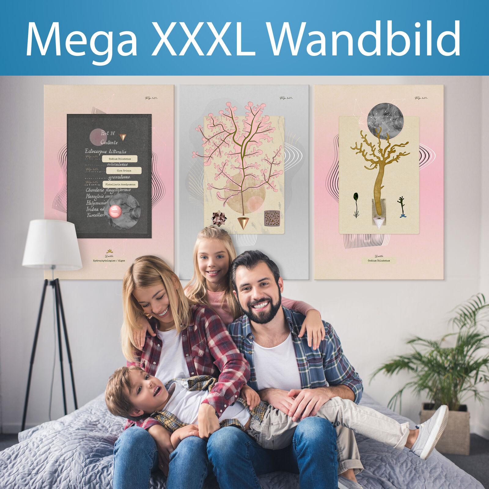 XXXL la fresque 180x90cm géant format Toile Triptyque de Canvas b-a-0436-ak-q
