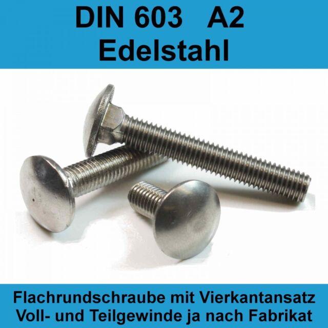 - V2A Flachrundschrauben mit Vierkantansatz u Schlossschrauben M6 X 45 DIN 603 Edelstahl A2 Vollgewinde 10 St/ück