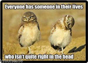 Quality Photo Fridge Magnet 3/'/' x 2/'/' Lovebird Parrot Funny Humor