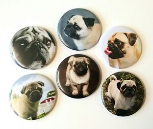 Pug-Dog-Fridge-Magnets-Set-55mm-6pc-Kitchen-Decor-Gift