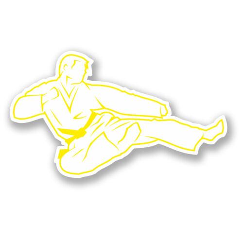 2 x Karaté yellow belt Autocollant Voiture Vélo Ordinateur Portable iPad Arts martiaux Judo Cadeau # 4180