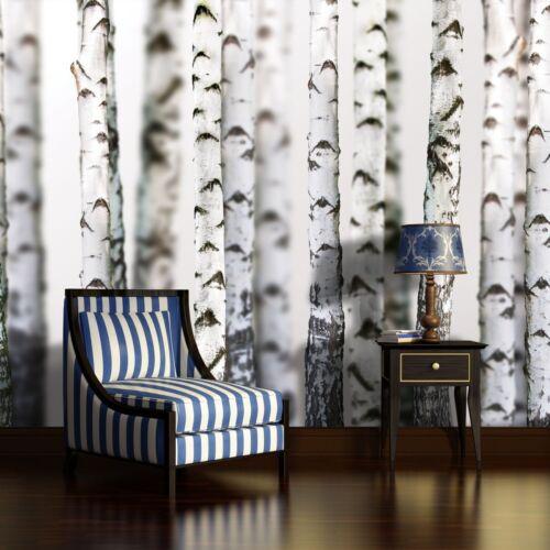 Nappes papier peint papiers peints photos papier peint poster Bouleaux Forêt Arbre Nature photo 14n1970vexxl