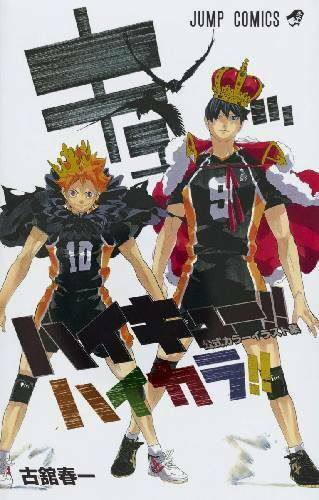 Official color illustration collection book Hikara ! F//S Tracking Haikyu!