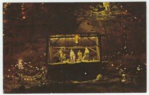 Christmas Lights in Ludlow Falls, Ohio Lot of Two Vintage Holiday Postcards