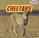 Cheetahs by Clara Reade (Paperback / softback, 2012)