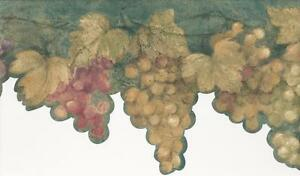 Wallpaper-Border-Tuscan-Grapevine-Green-Yellow-Purple-Red-Grapes-on-Teal-Die-Cut