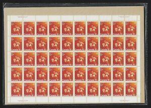 Canada Semi-Postal Stamps — Full Pane of 50 — 1975 Combat Sports: Boxing #B8 MNH