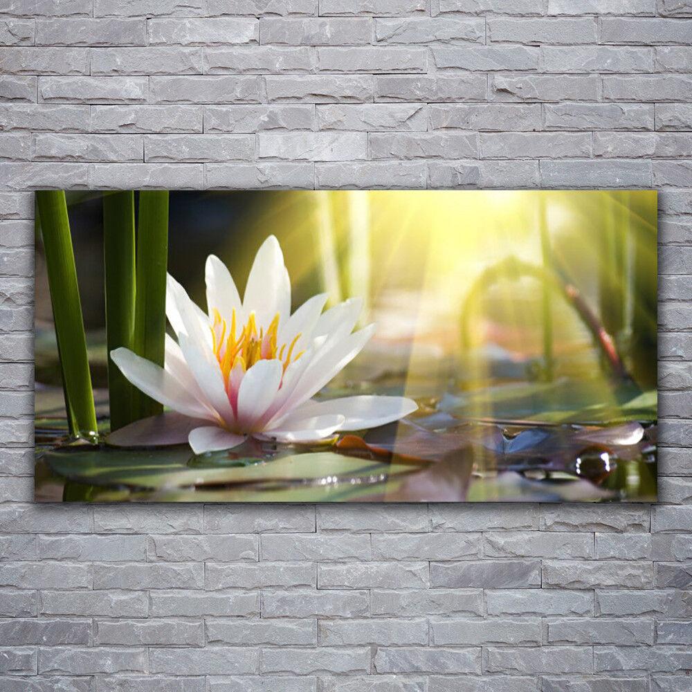 Photo sur toile Tableau Image Impression 120x60 Floral Eau Fleur