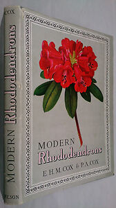 E-H-M-COX-amp-P-A-COX-MODERN-RHODODENDRONS-H-B-D-J-1957-B-W-COLOUR-ILLUSTRATIONS