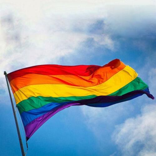 Rainbow Flag Polyester Handheld Flag Gay Pride Lesbian Peace LGBT With Grommets