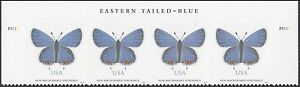 US 5136 Eastern Tailed-Blue Butterfly NMS header strip (4 stamps) MNH 2016