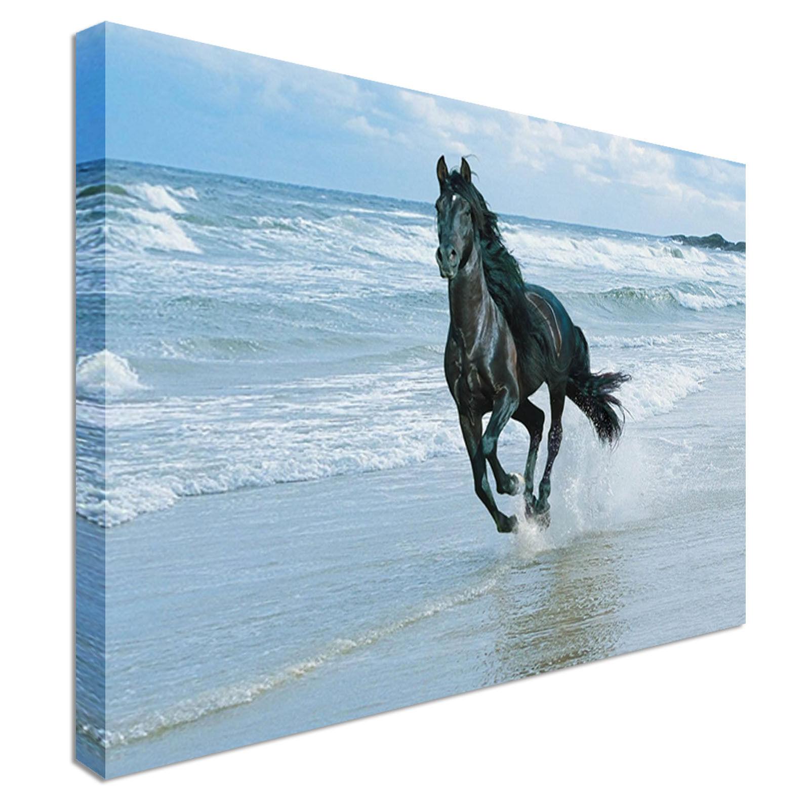 GRANDE tela Cavallo galoppante galoppante galoppante Wall Art Print GRANDI + qualunque dimensione b3b599