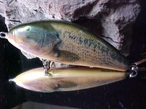 Salmo FATSO F14S RBS Color REAL BASS Sinking #1 Musky//Pike Lure in the USA