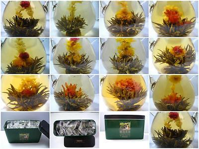24 Organic Blooming Flower Green Tea Variety Gift Box Packing