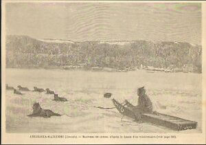 Détails Sur Canada Athabasca Esquimau Chien Traineau Eskimo Sled Dogs Gravure Image 1887