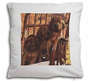 Irish-Red-Setter-Puppy-Dogs-Soft-Velvet-Feel-Cushion-Cover-With-Inn-AD-RS53-CPW