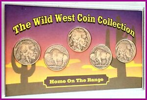The-WIld-West-5-Coin-Collection-1930-039-s-Buffalo-Nickels