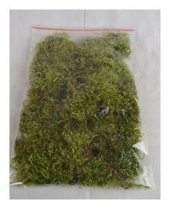250-g-Moos-Waldmoos-getrocknet-Gruen-Modellbau-Florist-unbehandelt