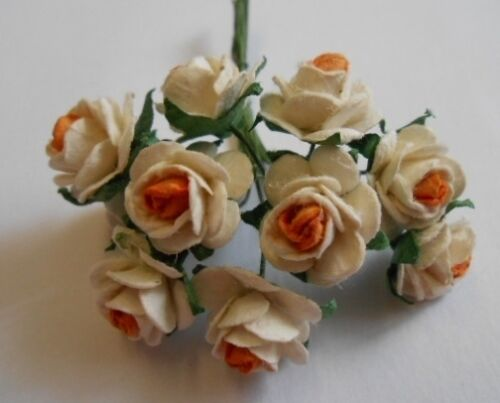 PK 10 CREAM /& YELLOW OPEN ROSES FOR CARDS AND CRAFTS