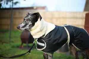 dog-snood-sherpa-and-polar-fleece-greyhound-lurcher-whippet
