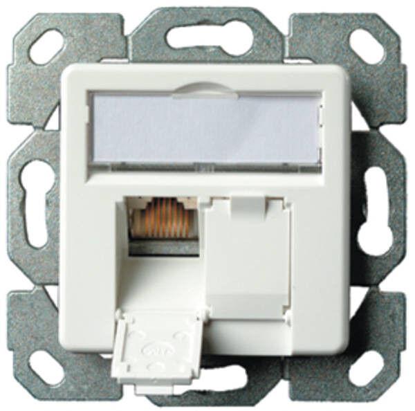 Telegärtner Datenanschlussdose Cat6A 2-fach alpinweiß