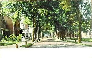 Early-1900-039-s-DBPC-Postcard-Second-2nd-Street-Honedale-Pa