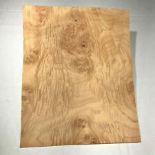Maple Burl Raw Wood Veneer Sheet 11 X 9 Inches 142nd Thick H7684 19