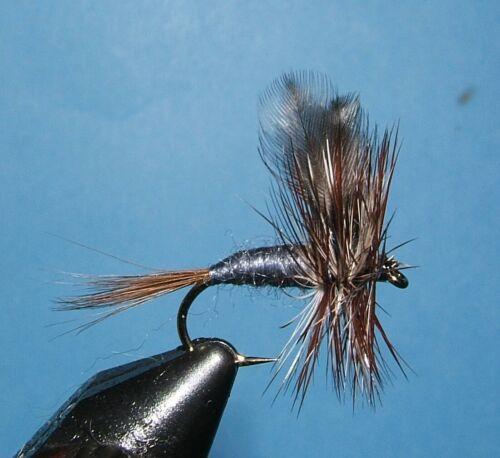 12 12 Adams mayflies 14. 12 dry flies -# 10