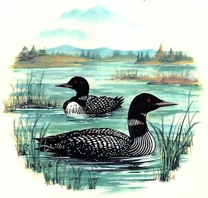 Loon-on-the-Lake-Select-A-Size-Waterslide-Ceramic-Decals-Xx