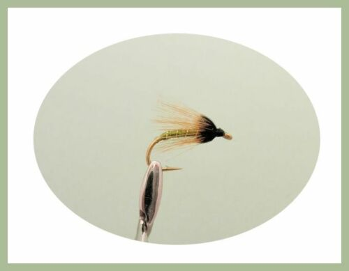 10 Types Fly Fishing BOX38 Wet Spider Pattern Trout Flies 40 Boxed Set