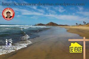 SE VENDE 11 HECTARES CERRITOS Baja California Sur
