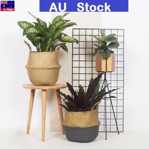 Foldable-Seagrass-Flower-Belly-Basket-Woven-Storage-Holder-Plant-Pots-Home-Decor