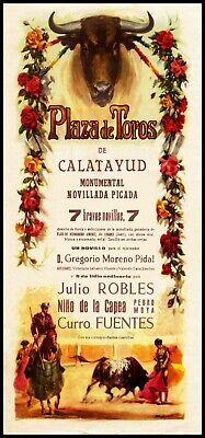 "Plaza De Toros Acuna #1 Canvas Art Poster 12/""x 24/"" Bullfighting"