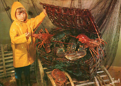 Carte Postale Bretagne Retour De PÊche Enfant CrustacÉs