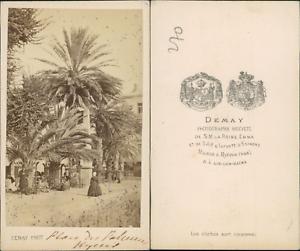 Demay Hyeres Place Des Palmiers Vintage CDV Albumen