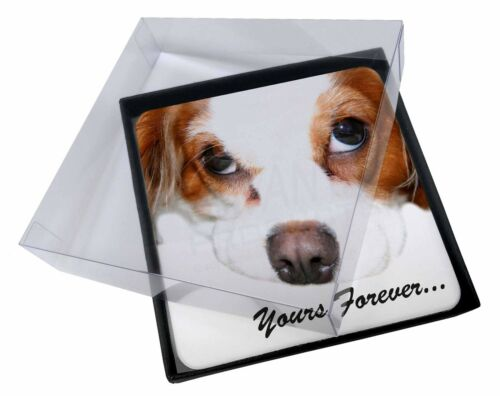 4x Cavalier King Charles 'Yours Forever' Picture Table Coasters Set i, ADSKC57C