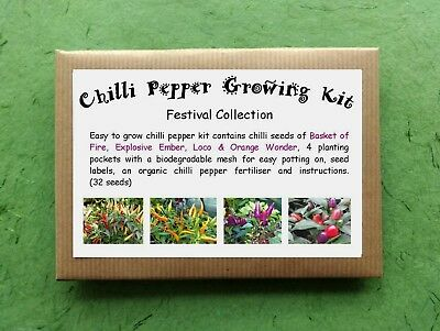 Chilli Pepper Growing Kit - Festival Collection | eBay