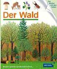 Der Wald von Jeunesse Gallimard und Rene Mettler (2013, Gebundene Ausgabe)
