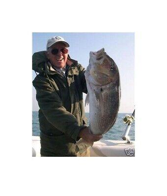 Filo Pesca Traina Acciaio Inox + Affidabile Del Monel Diam. 0,60 Da 50 Lb Rotex Prezzo Di Vendita