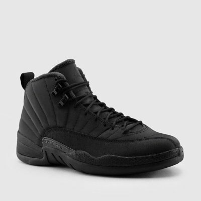 wholesale dealer b3bdf b69ae Nike Air Jordan Retro XII 12 WINTERIZED Black Winter BQ6851-001 Men Sz 10  10.5 | eBay