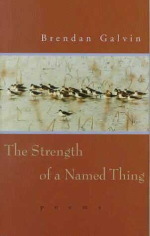 Strength of a Named Thing  Poems