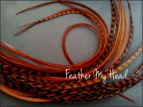 28-36cm 10 Pc Ginger  Grizzly//Solid Feather Hair Extension 11-14 In Long