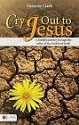 Cry Out to Jesus: A Family's Journey Through the Valley of the Shadow of Death by Suzanne Clark (Paperback / softback, 2009)