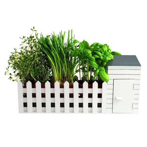 Indoor Kitchen Window Shed Herb Plant Pot Gardening Allotment Planter Gifts Set