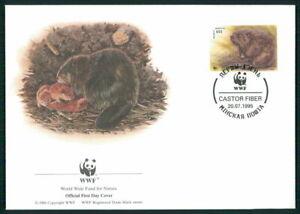 Agressif Le Belarus Bijoux-fdc 1995 Wwf Faune Animaux Animals Castor Beaver Castor El84-afficher Le Titre D'origine Les Clients D'Abord