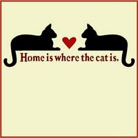 HOME IS WHERE THE CAT IS - CAT STENCIL - ANIMAL STENCIL - The Artful Stencil